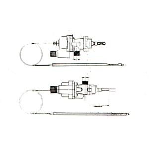 STAR - T5506